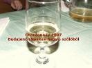 Kerék 2007 bor_1