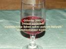 Kerék 2007 bor_4