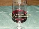 Kerék 2007 bor_6
