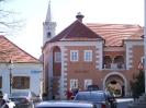Ruszt 2008 Tremmel_15