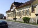 Ruszt 2008 Tremmel_18
