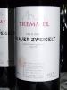 Ruszt 2008 Tremmel_35