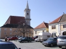Ruszt 2008 Tremmel_9