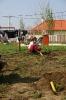 Faültetés 2006_18