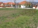 Közös m. 2010_14