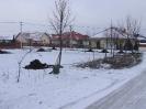 Faültetés 2010_10
