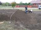 Növény 2009_1