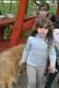 Majális 2011 ebéd és értékelés_76