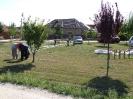 NYANYP 2009 sor 1_3