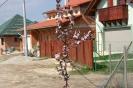 Házak 2004 ápr_5