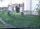 Kanyar fák 2012_1